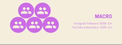 مواصفات المؤثرين تحت تصنيف Macro وذلك حسب عدد متابعينهم على السوشيال ميديا